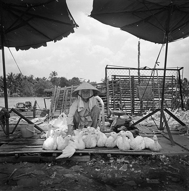 Vietnam-Mekong-Delta